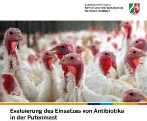 Screenshot_NRW_Putenmastbericht