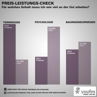 Infografik –Stundenzahl Tiermedizinstudium vs. Gehalt
