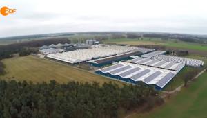 ZDF – Luftaufnahme des umstrittenen Straathof-Betriebes in Gladow