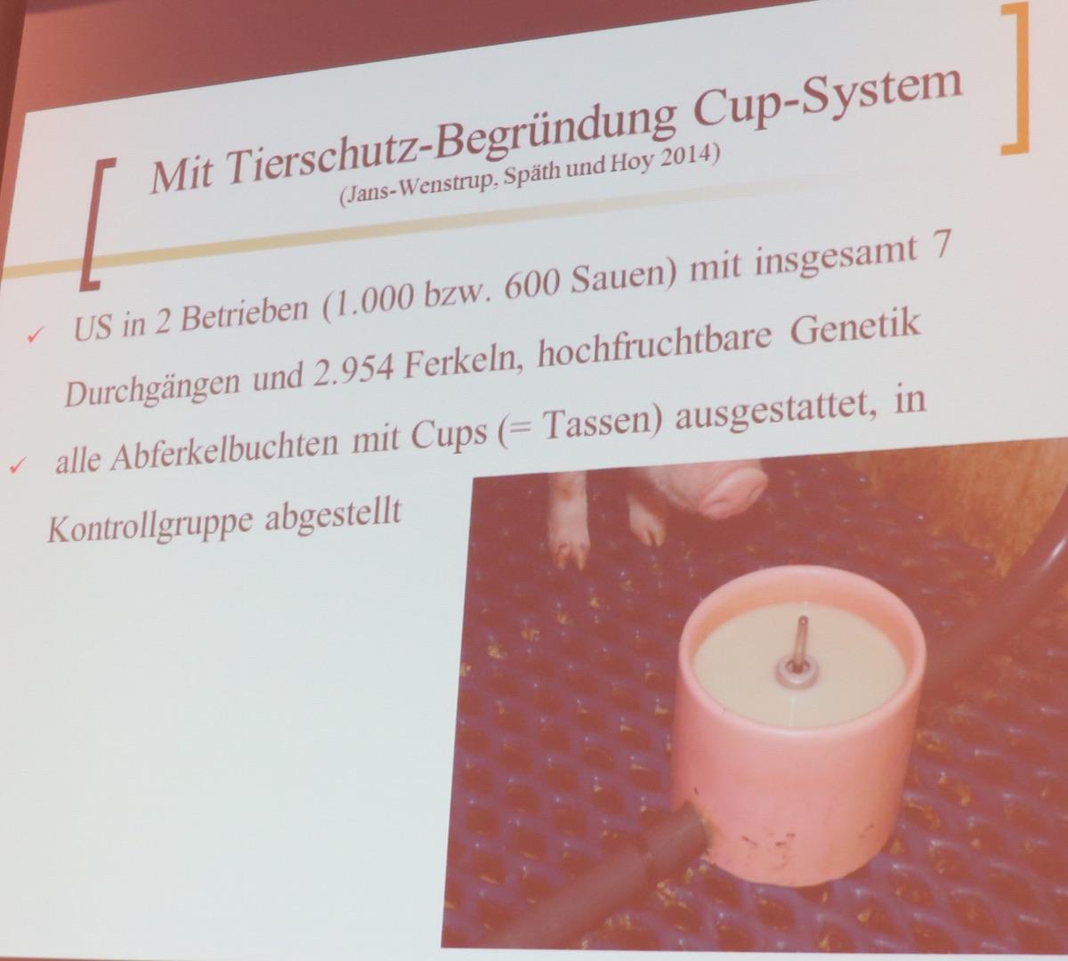 """Die Zufütterung über ein """"Cupsystem"""" kann größere Ferkel retten."""