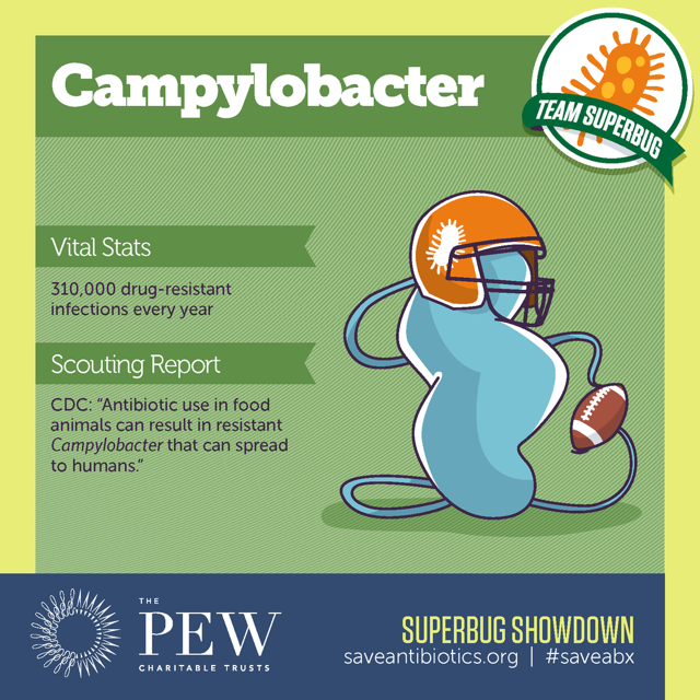 campylobacter-offense-team-superbugs