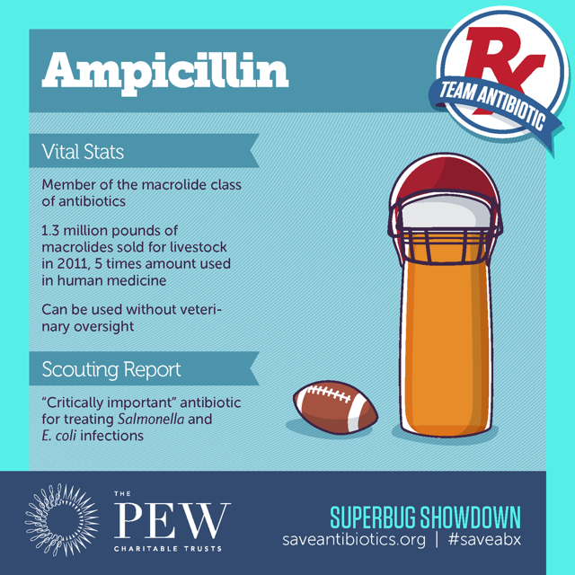ampicillin-defense-team-superbugs-