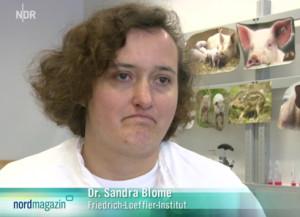 Ist skeptisch in Sachen ASP-Impfstoff – Dr. Sandra Blome (FLI).
