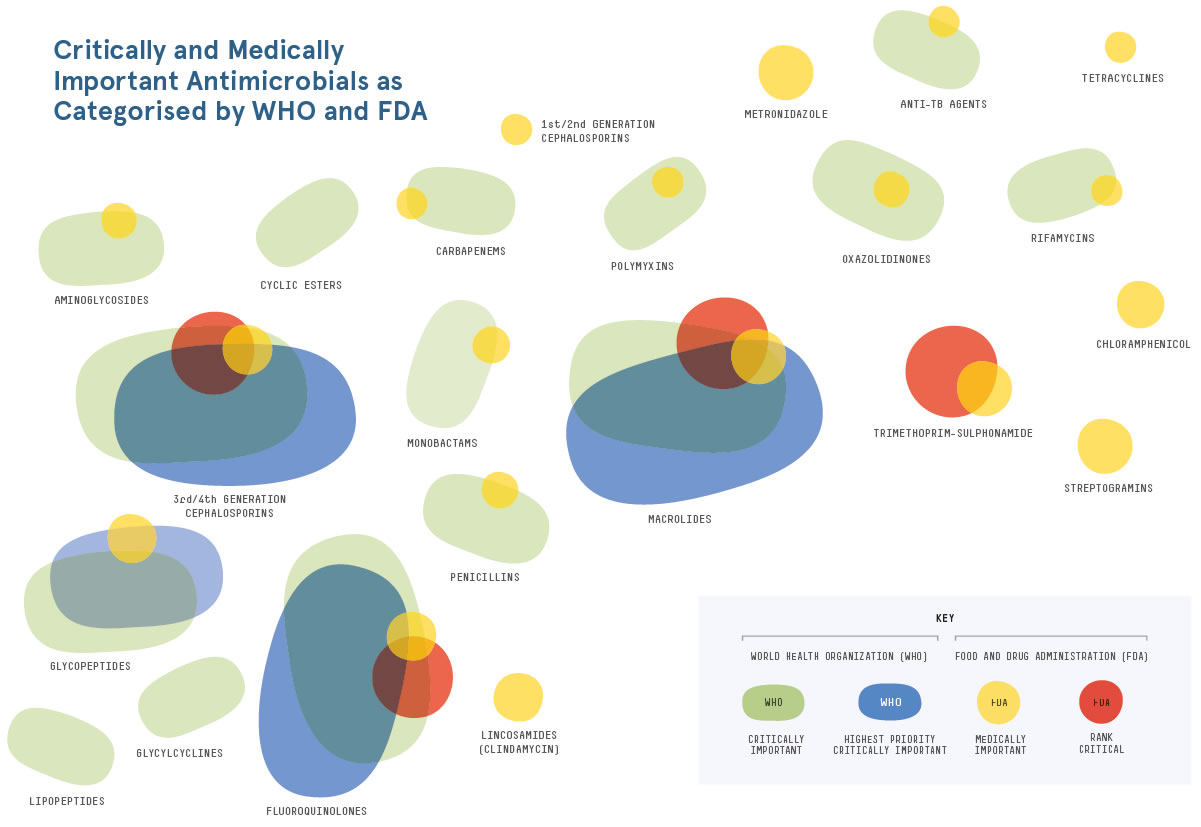 Wie wichtig ist ein Antibiotikum für den Menschen? – Die Grafik zeigt, wo sich WHO und FDA bei der Einstufung einig sind und wo nicht.