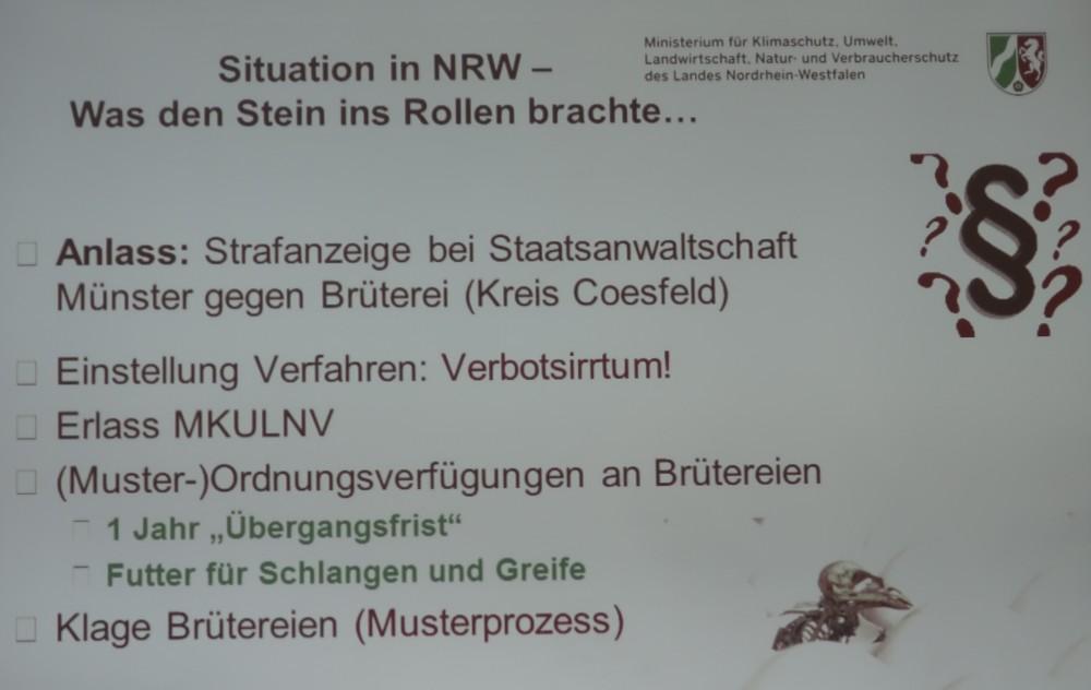 Ein Musterprozess zur Klärung der Eintagskükenfrage – war dass das Ziel des Tötungsverbotes in NRW? Politische klang es anders, aber auch die Grünen wissen um die Realitäten.
