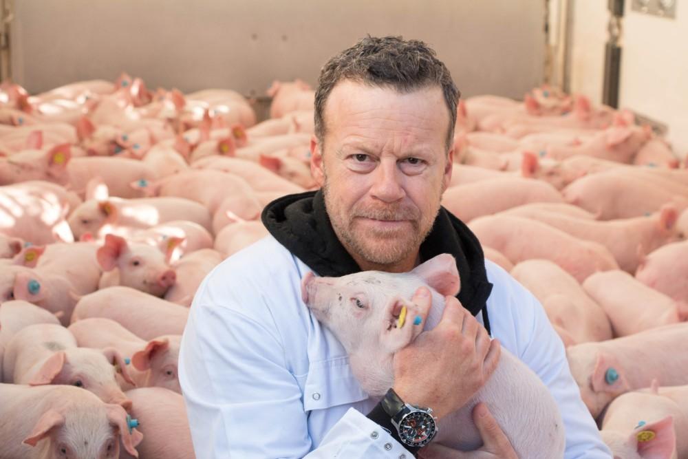Im RTL-Schweinetransporter ist die Stimmung gelöster als bei einer Kaffeefahrt.