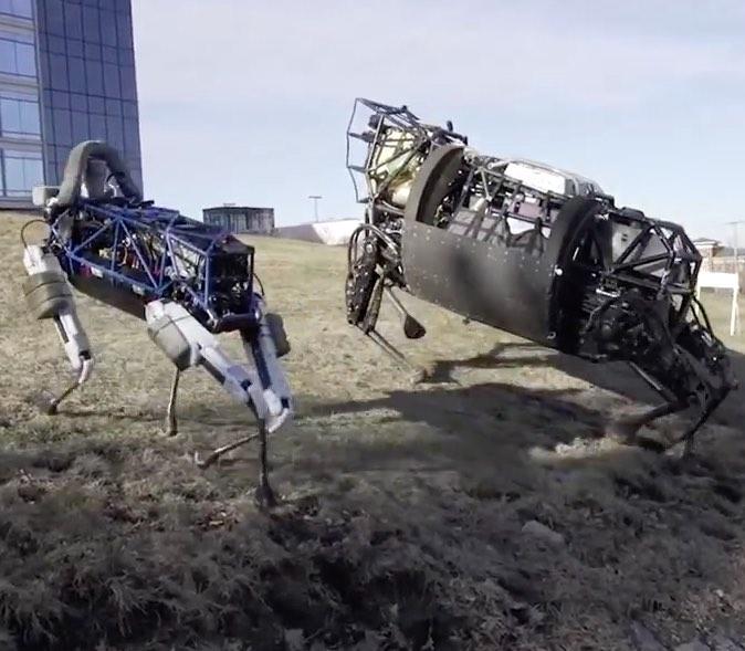 """""""Almauftrieb"""" der fleischfreien Nutztierrassen – was Robotertechnik leisten kann."""
