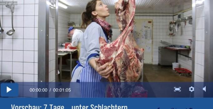Blut sehen – zwei NDR-Journalisten wagen den Selbstversuch und arbeiten sieben Tage beim Schlachter.