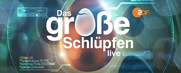ZDF-Sendungslogo: Das grosse Schlüpfen (©ZDF/Die Animationsfabrik)