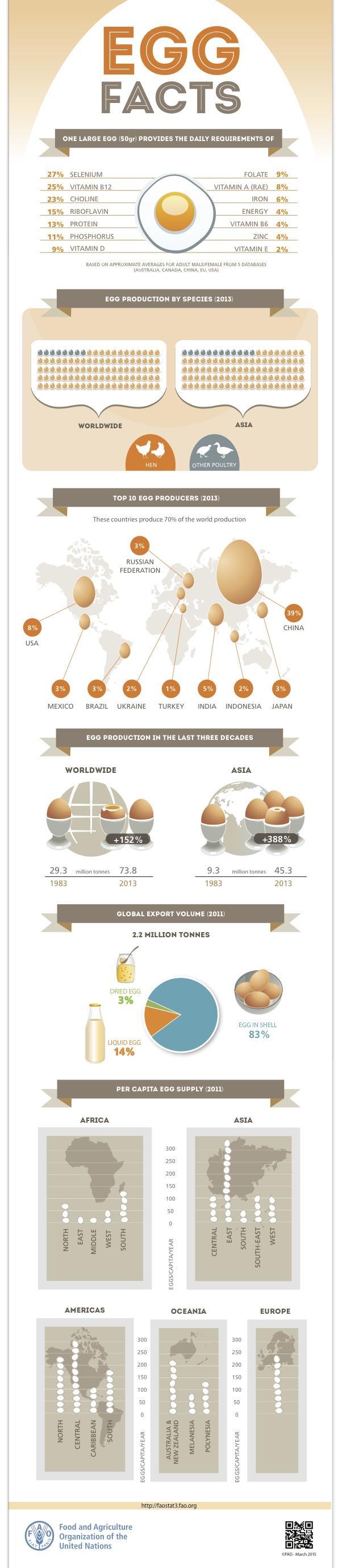 Fakten zur weltweiten Eierproduktion – Infografik der FAO. (Foto: © FAO)