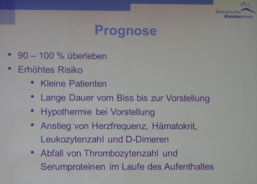 Die Prognose bei Schangenbissen ist grundsätzlich gut, aber es gibt Risikofaktoren. (© Folie: Dörfelt/LMU München/Bay. Tierärztetage 2015)