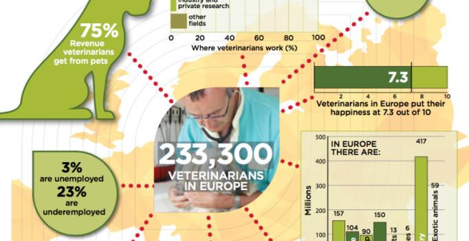 Europas Tierärzteschaft in Zahlen – FVE-Grafik. (© FVE)