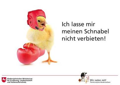 """Kampagnenmotiv """"Schnabelkürzen"""" aus dem Niedersächsischen Tierschutzplan. (© Landwirtschaftsministerium Niedersachsen)"""