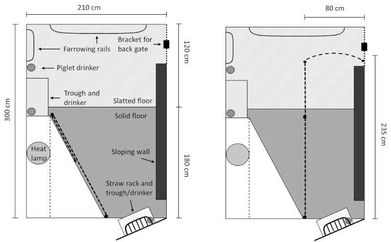 Abmessungen und Aufbau des SWAP-Abferkelstandes. (Grafik: Hansen/Fixieren oder frei bewegen – der Versuchsaufbau. (Grafik: @Weber/Journal of Animal Science)