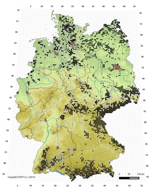 Verbreitungskarte Kreuzotter (© Onlineatlas Feldherpetologie –BfN/DGHT e.V.)