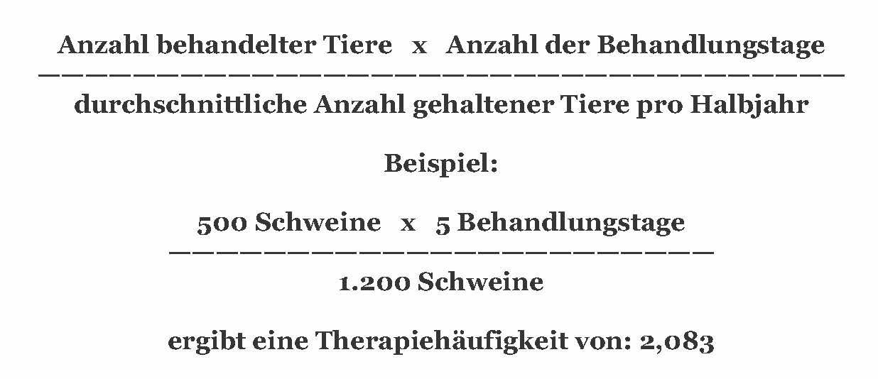 Beispielrechnung mit der Berechnungsformel für die Therapiehäufigkeit. (© WiSiTiA)