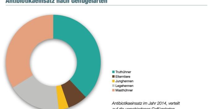 Antibiotikaeinsatz Österreich nach Geflügelarten 2014. (Grafik © QGV)