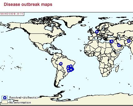 Hotspot Brasilien – Übersicht der Rotz-Ausbrüche weltweit von 2009 bis heute. (Karte: ©OIE/WHAID)