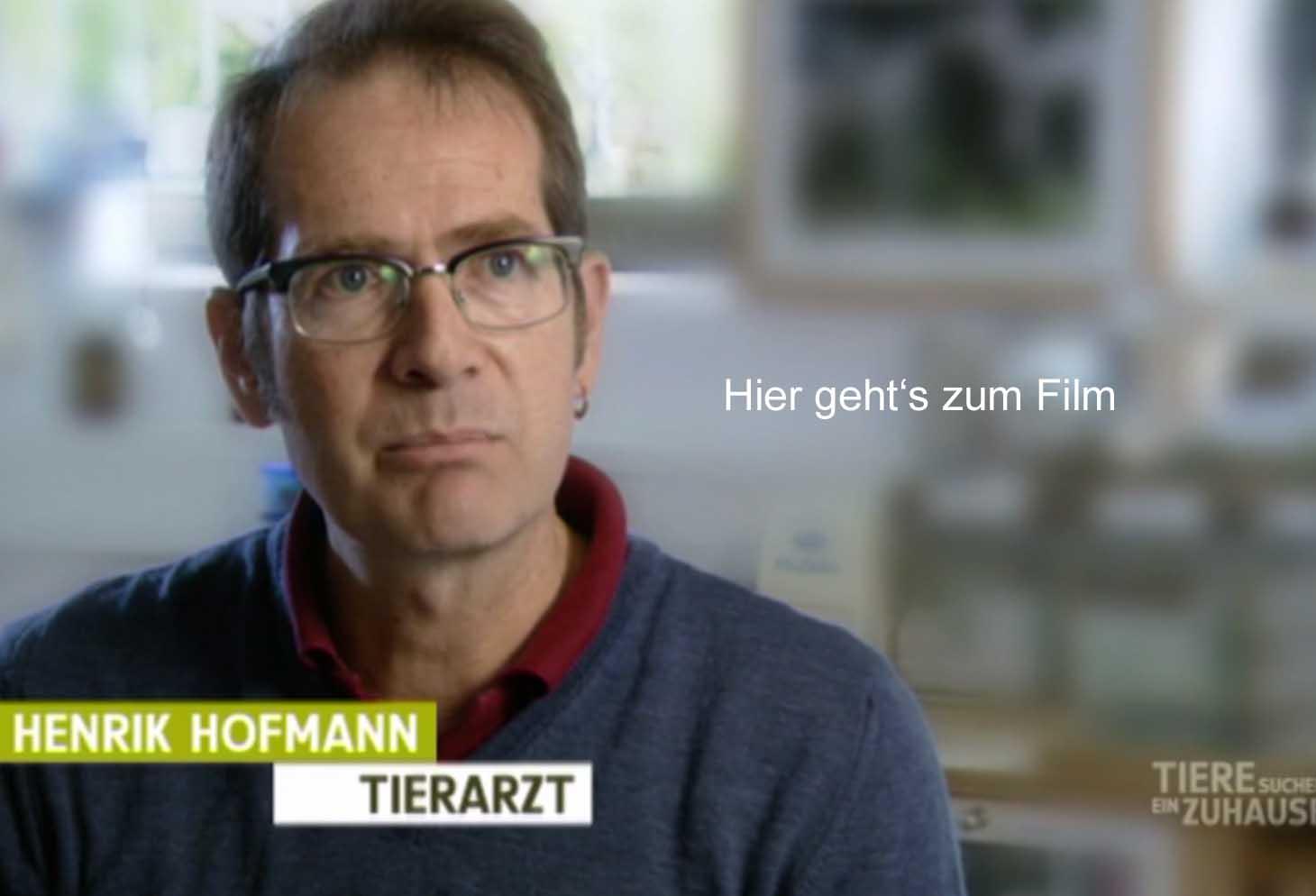 WDR-Filmbeitrag