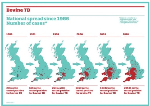Ausbreitung der Rinder-Tbc in Großbritannien von 1986 bis 2010- (Quelle/© BVA-Präsentation)