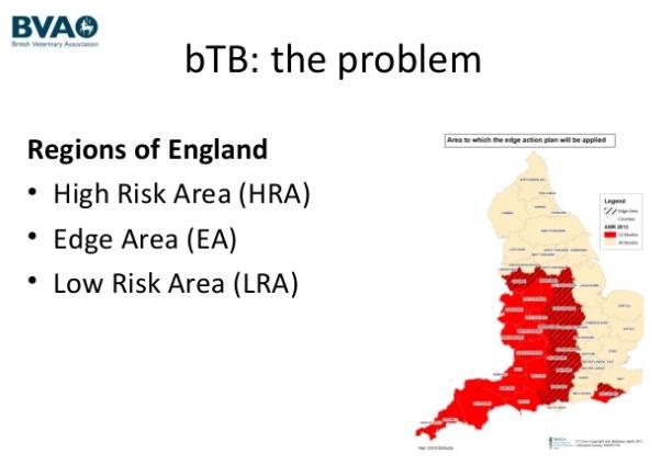 Rinder-Tbc-Risikogebiete in Großbritannien: rot = Hoch-Risiko-Gebiete / straffiert = Schutzzone / gelb = Niedrig-Risiko-Gebiete. (Quelle/© BVA-Präsentation)