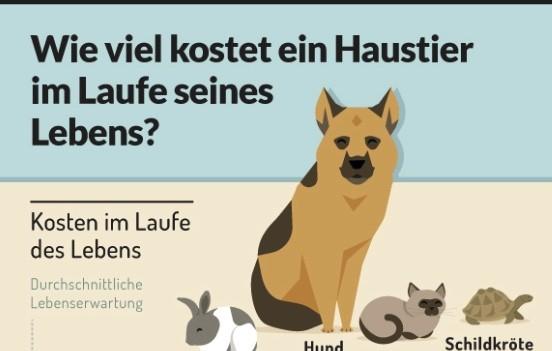 Haustierkosten_Screesnhot