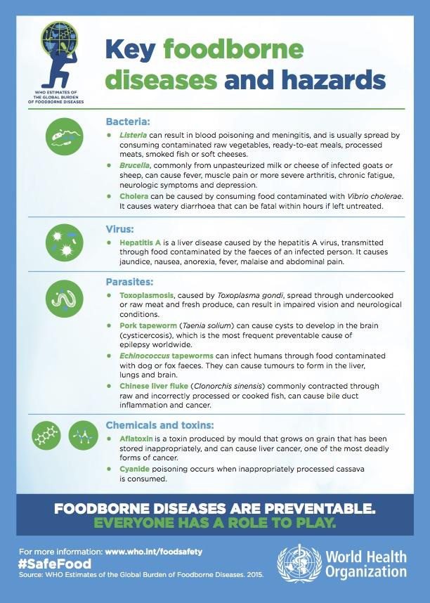 Die wichtigsten Auslöser lebensmittelbedingter Krankheiten. (Grafik: © WHO)