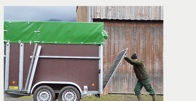 Der Stall ist leer, die letzte Kuh verladen – ein Milchviehbetrieb gibt auf. (©screenshot Blog bauerwilli.com)