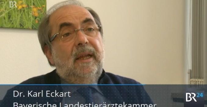 Dr. Karl Eckart, Präsident der Bayerischen Landestierärztekammer im BR-Interview. (©screenshot BR)