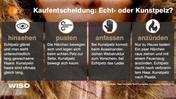 Notfals anzünden – nur nicht im Laden. Wie man Kunstpelz von echtem Pelz unterscheidet. (Grafik: ©WiSo/ZDF)