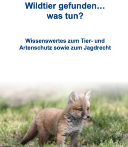 Ein Faltblatt gibt Tipps zum Umgang mit Wildtieren. (©Landestierschutzbeauftragte Hessen / Erni/Fotolia.com)