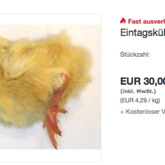 Getötete Eintagsküken - ein teil wird als Tierfutter verwertet. (Foto: screenshot ebay-Angebot)