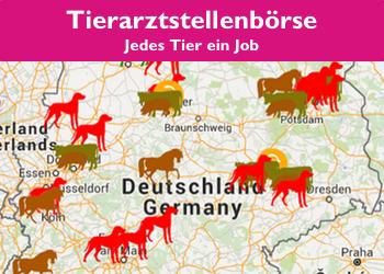 Anzeige_Tierarztstellenboerse2.jpg