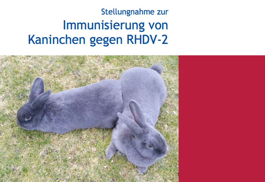Neue Impfempfehlungen der der StiKO Vet hier als PDF herunterladen