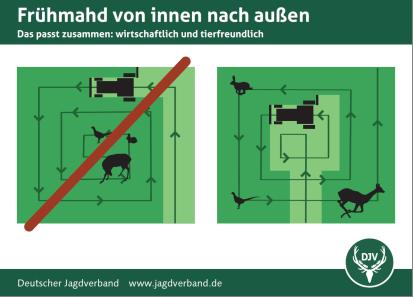 Tieren beim Mähen eine Chance zur Flucht geben – Infografik des Deutschen Jagverbandes. (Grafik: © DJV)