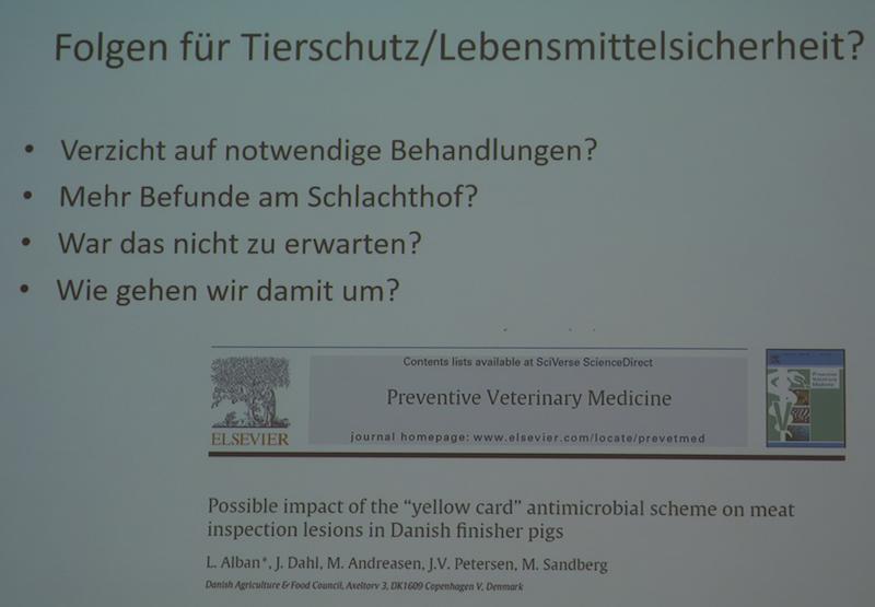 Zu starke Antibiotikareduzierung führt zu mehr kranken Tieren am Schlachthof – eine dänische Untersuchung sieht Zusammenhänge. (Foto: © Vortrag A. Palzer (bpt) Saarbrücken 7.5.2016)