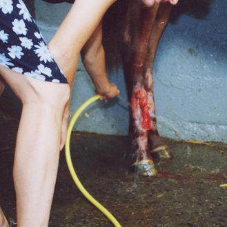 """Nur oberflächliche Wunde oder mehr? Die genaue Diagnose ist wichtig. Das BGH-Urteil zur """"Beweislastumkehr"""" greift nur bei """"groben Behandlungsfehlern"""". (Foto: © Henrik Hofmann)"""