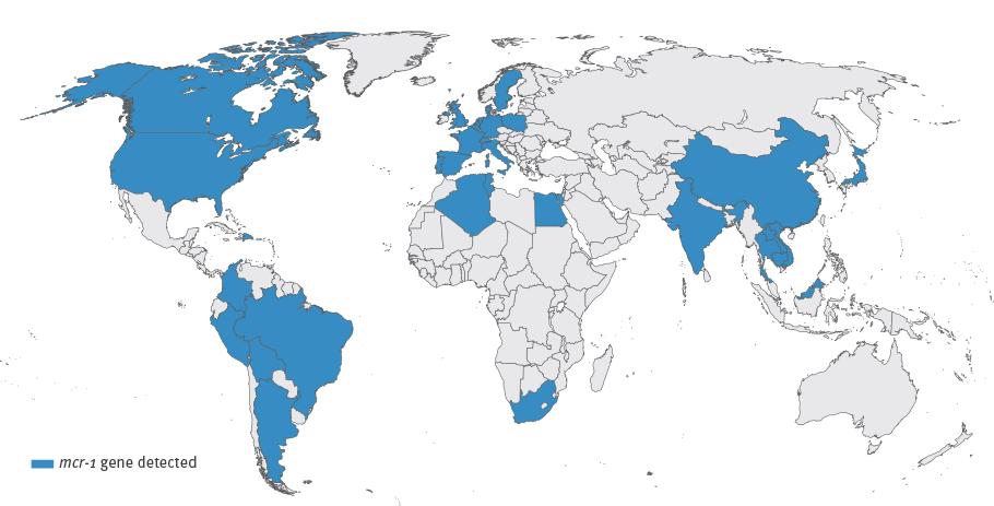 Karte der Länder, in denen das mcr-1-gen der Colistin-Resistenz inzwischen nachgewiesen wurde.