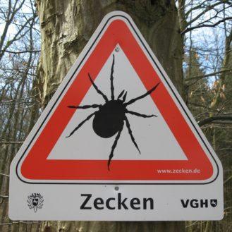 Auch im Raum Hannover wurde Zeckenenzephalitis jetzt bei zwei Hunden nachgewiesen. (Foto: © M. Prinke / flickR)