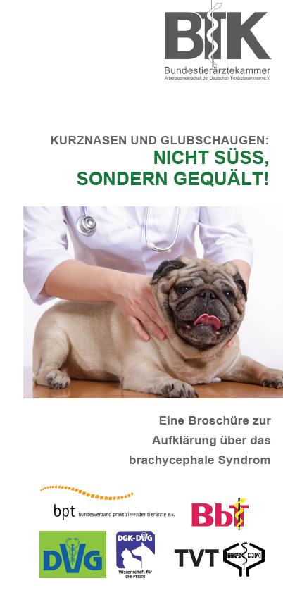 """Titelseite des """"Qualzucht""""-Flyers der BTK – PDF-Download durch Klick auf das Foto. (©BTK)"""