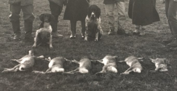 Gefährdet sind vor allem Jäger, Landwirte und Tierärzte. (Bild: Archiv Henrik Hofmann)