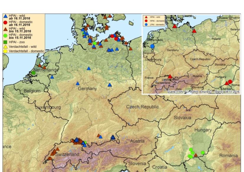 H5N8-Ausbreitung in Europa (Stand: 18.11.2016 – Karte © FLI)