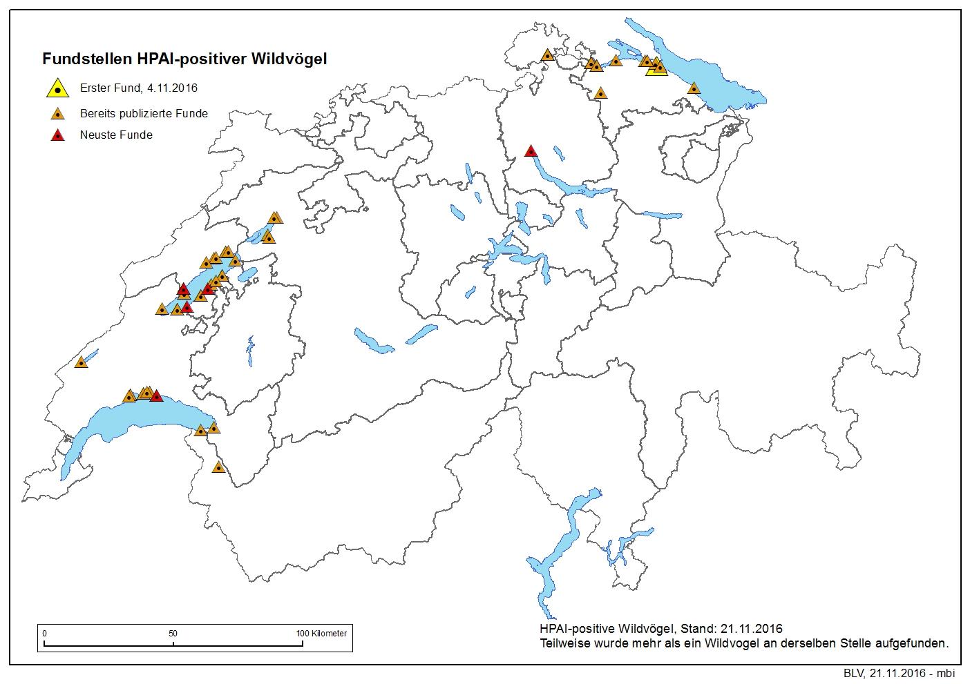 H5N8-Ausbrüche in der Schweiz (Stand 21.11.2016 / Karte: ©BLV)