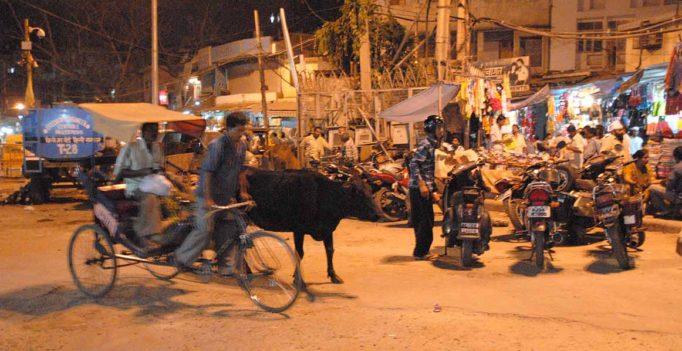 Mit der Fahrrad-Rikscha nach Old-Delhi
