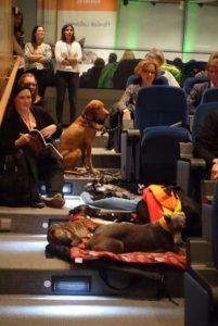 Treppenleben mit Hund: Der erfahrene Kongressbesucher bringt ein paar Hundekettchen mit.