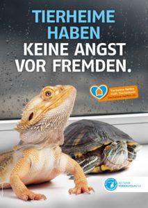 Kampagnenmotiv <deutscher Tierschutzbund zur Unterstützung von Tierheimen die Exoten aufnehmen – hier Echse und Schmuckschildkröte