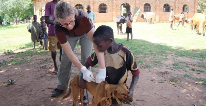 """""""Tiere bedeuten Leben, gesunde Viehherden helfen, die Ernährung der Familien, insbesondere der Kinder zu sichern."""" (Bild: Dr. Christine Montag/TOKA)"""