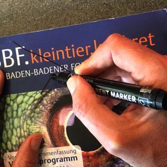 """Nach fast dreißig Jahren Fortbildungstagen das Aus: """"Baden-Baden"""" gibt es nicht mehr. (Bild: wisitia/hh)"""