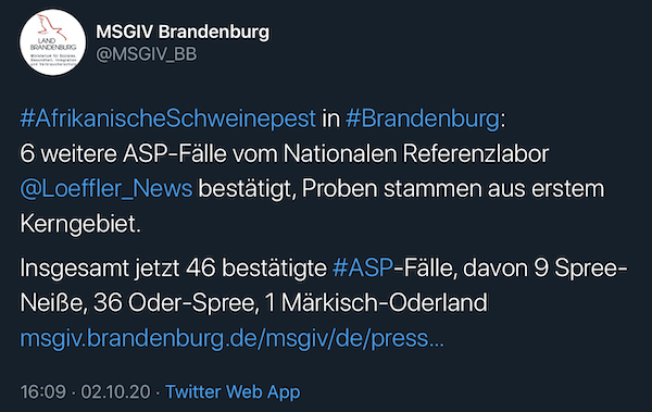 Tweet MSGIV bestätigt 6 neue / 46-ASP-Fälle insgesamt
