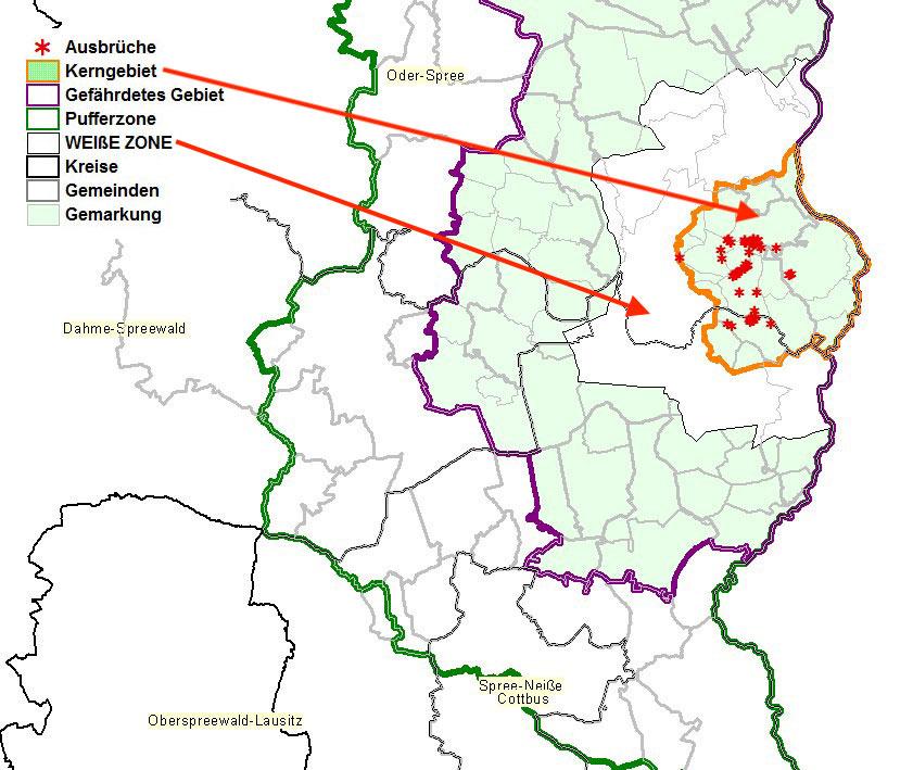"""Karte des ersten ASP-Kerngebietes in Brandenburg mit der eingezeichneten """"Weiße Zone"""""""